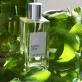 Matin d'Eté | Amarante Parfums